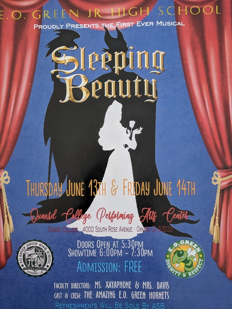 Sleeping Beauty Flyer