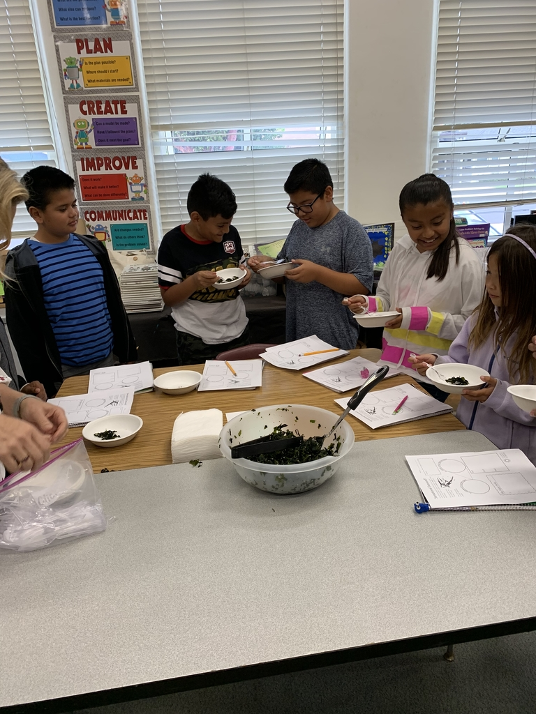 Students sample seaweed salad!