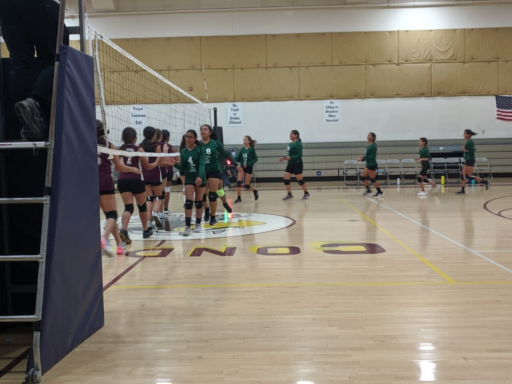 Green JHS Volleyball 2
